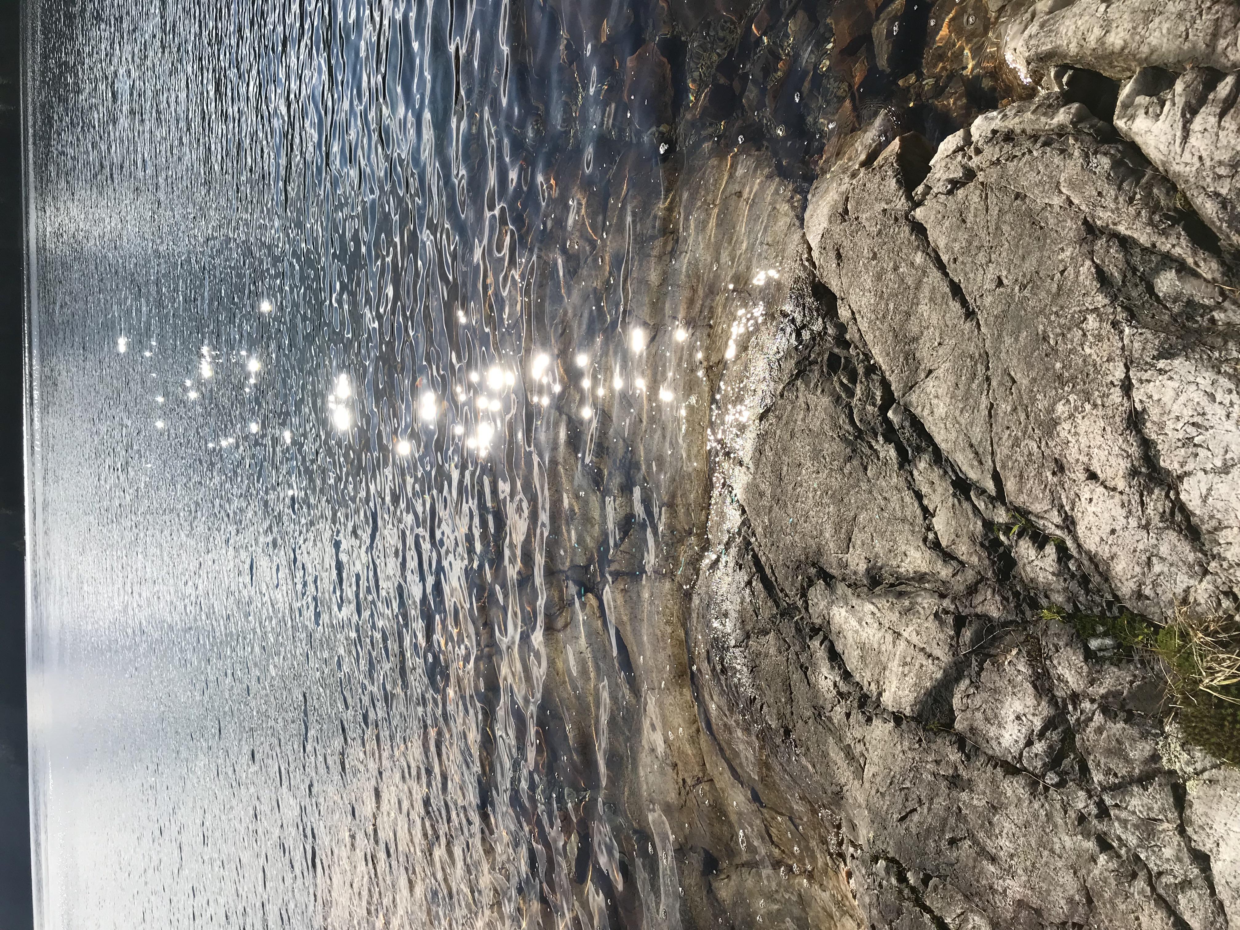 sunlightonwater