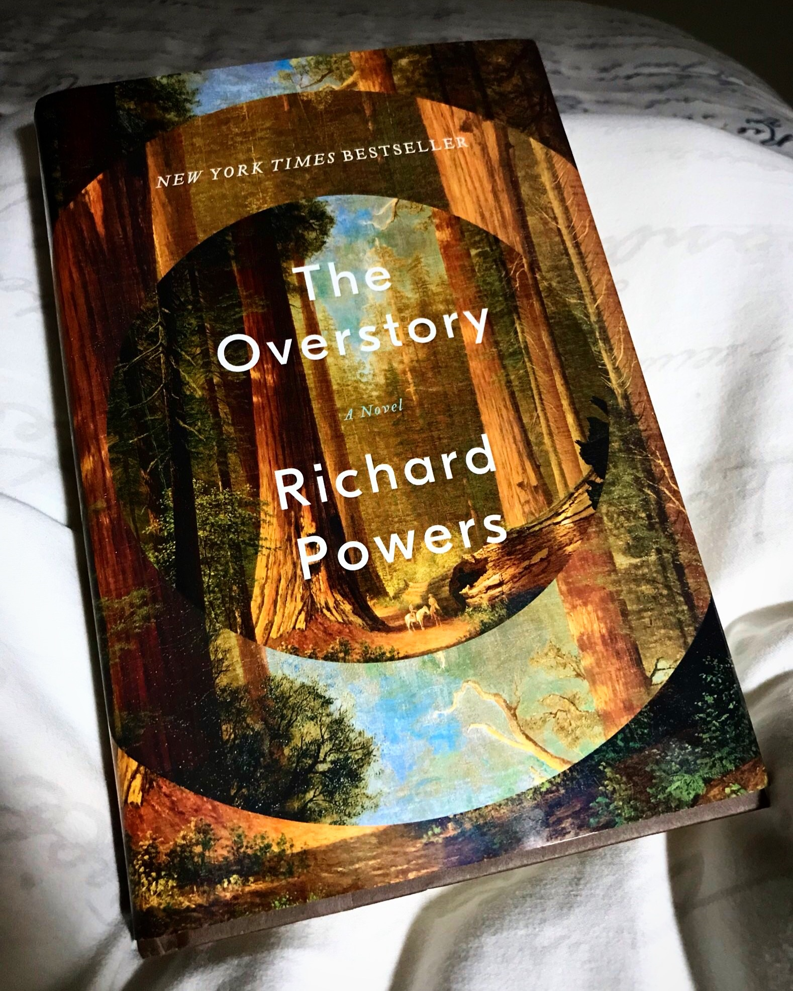 the-overstory