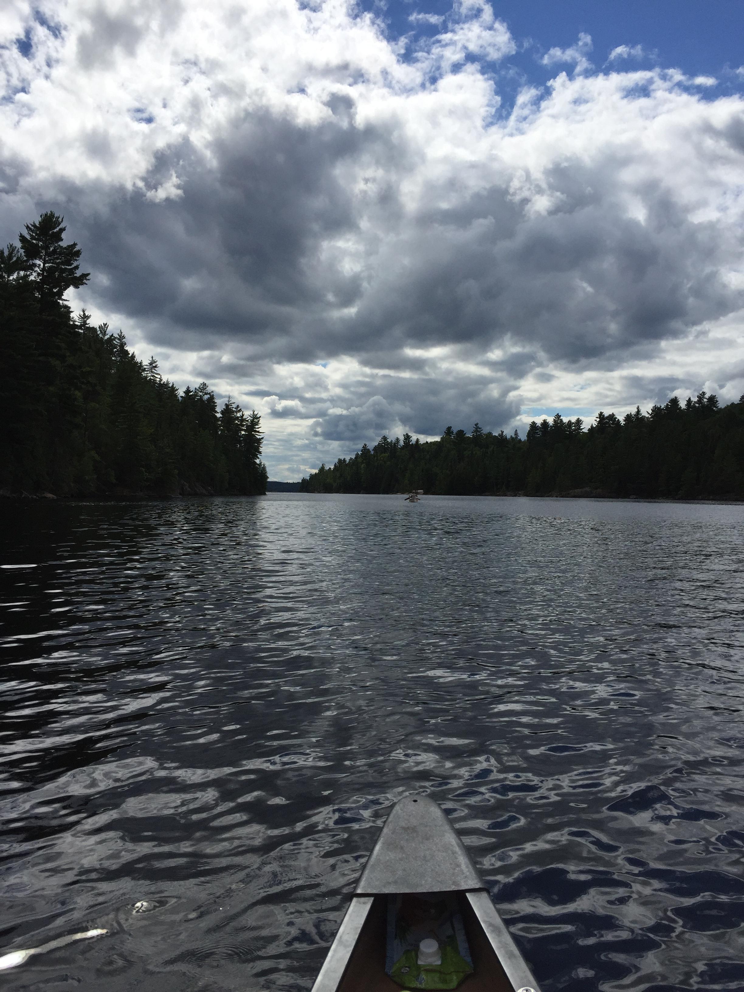 Wilderness Picture